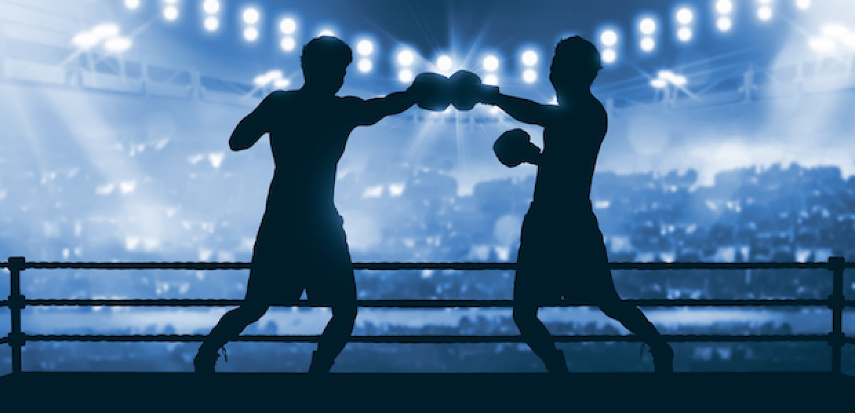 Boxers in ring