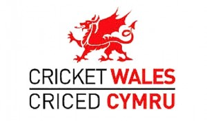 Independent Directors - Cricket Wales