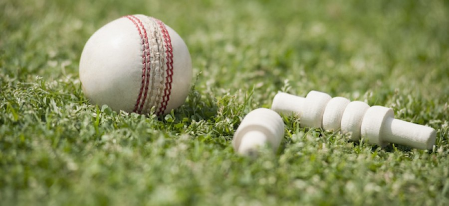 Cricket ball and wickets on grass