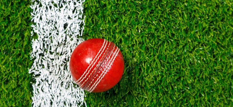 Cricket ball on field