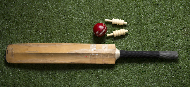 Cricket ball, bat, and wickets on grass