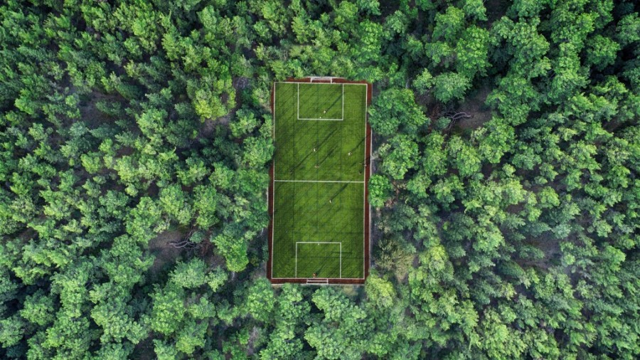 Football pitch surrounded by lush vegetation