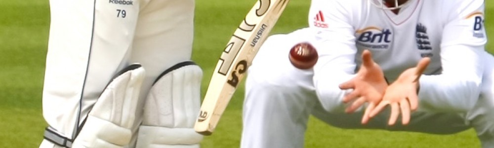 Cricket Batter and Catch