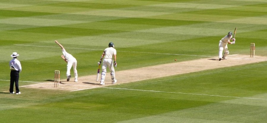 Cricket_Play