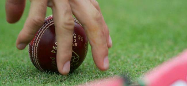 Hand_Picking_Up_Cricket_Ball