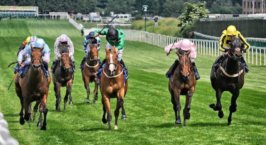 Horse Racing Sandown