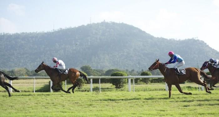 Indian_Horseracing