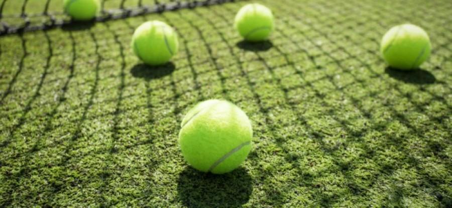 Tennis_Balls_on_Grass_by_Net