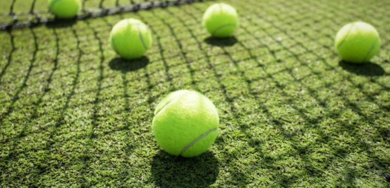 Tennis_Balls_on_Grass_by_Net