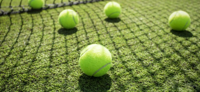 Tennis balls on grass