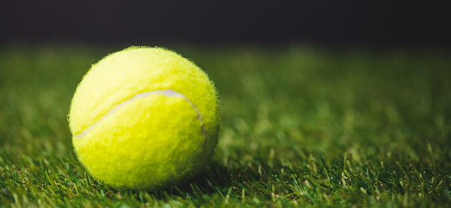 Close up of tennis ball on grass