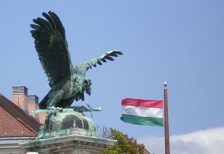 Turul_and_Hungarian_flag
