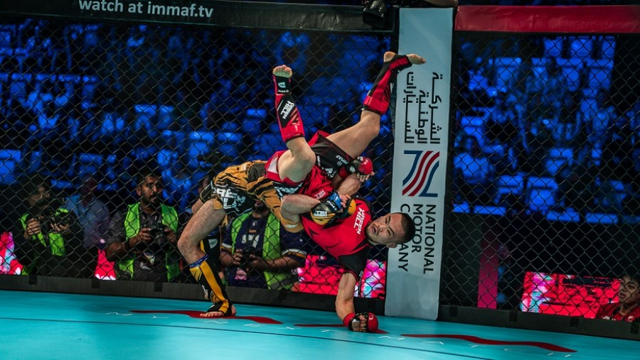 IMMAF CEO comments on Council of Europe's new recommendations on Martial Arts & Combat Sports